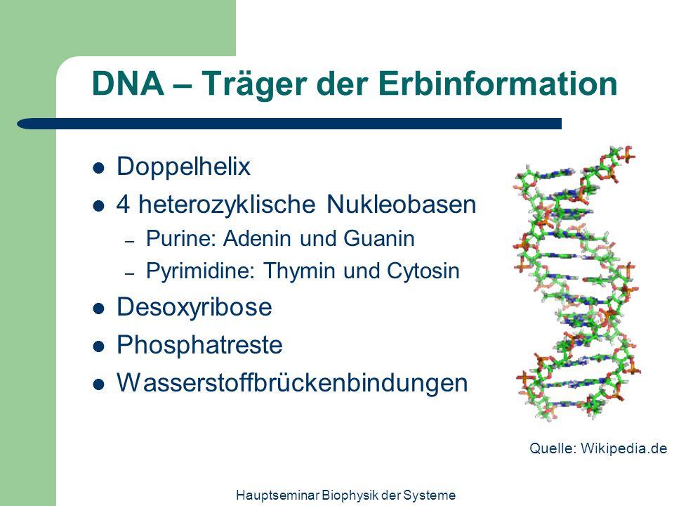 DNA – Träger der Erbinformation
