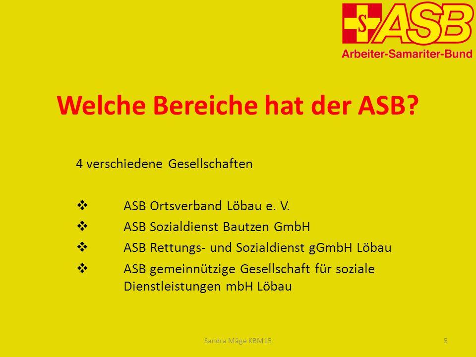 Welche Bereiche hat der ASB