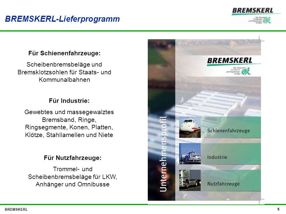BREMSKERL-Lieferprogramm