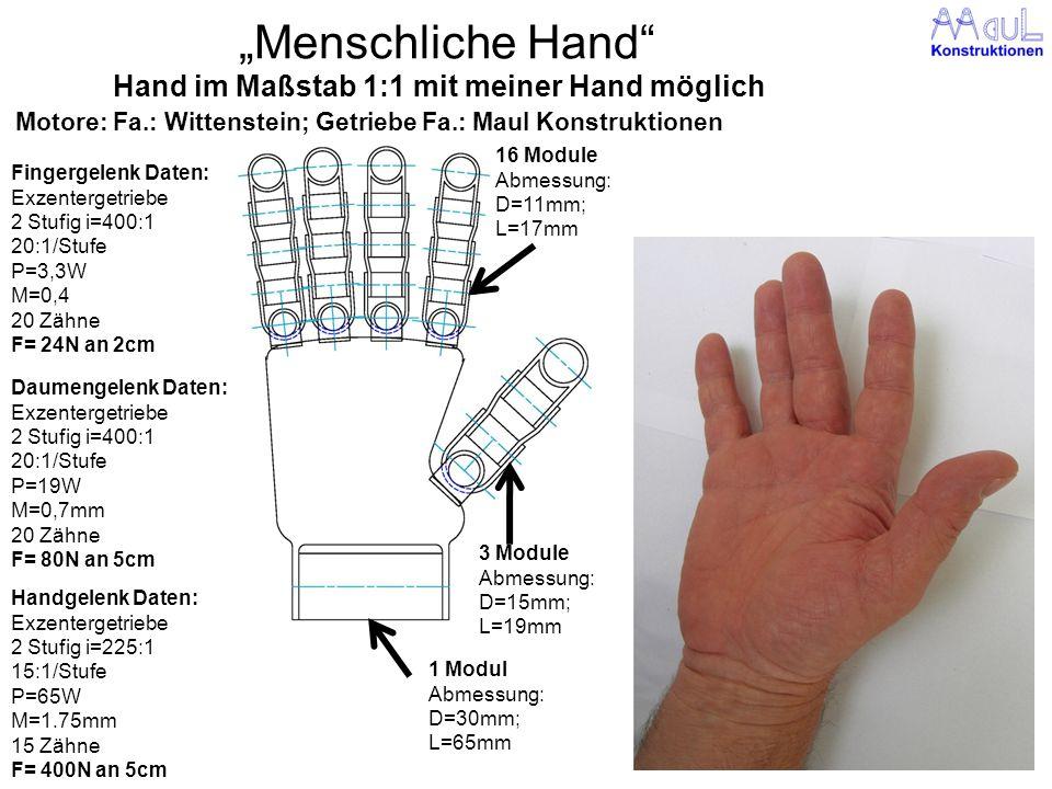 Hand im Maßstab 1:1 mit meiner Hand möglich