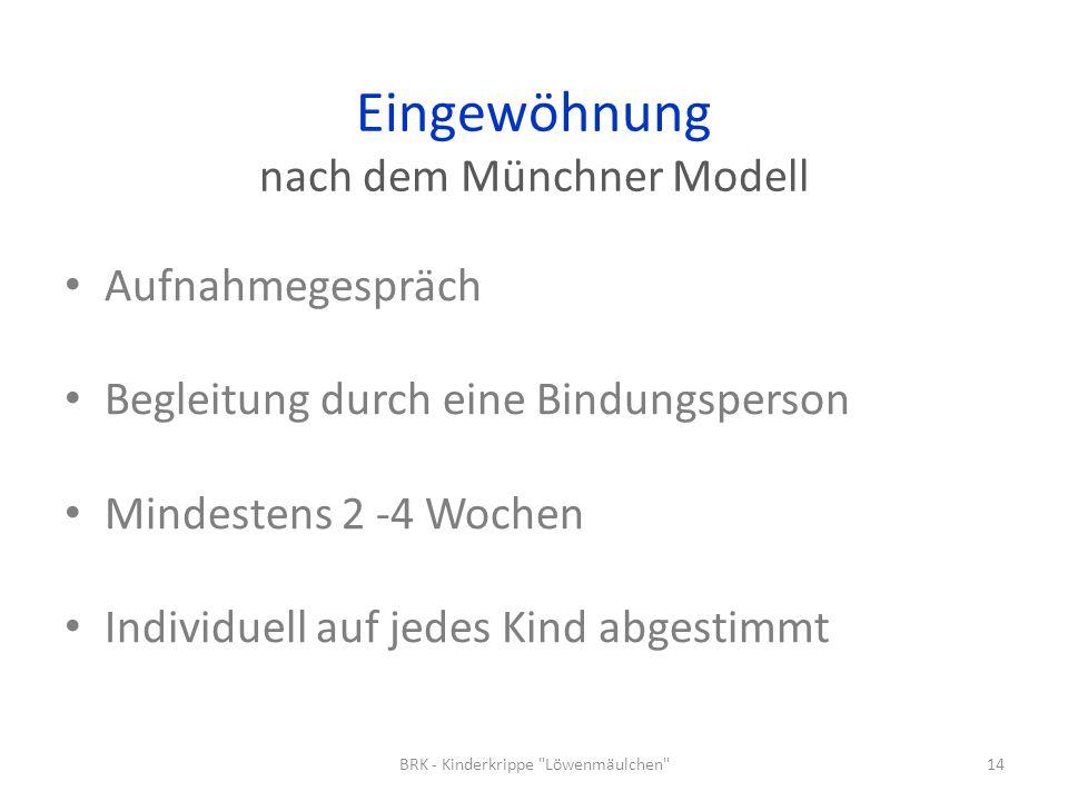 Eingewöhnung nach dem Münchner Modell