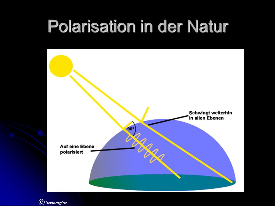 Polarisation in der Natur