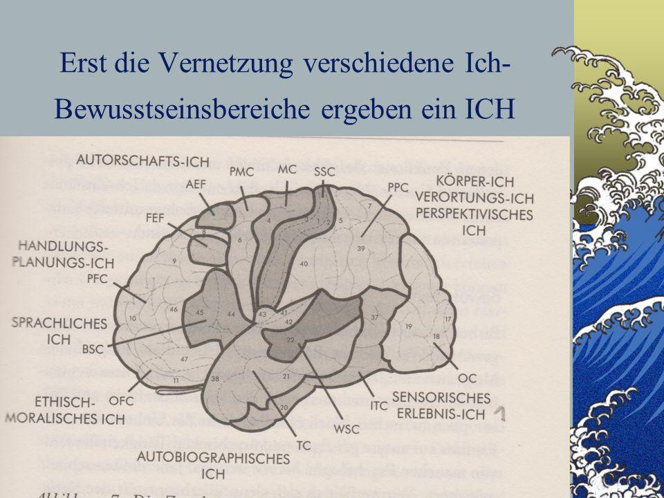 Erst die Vernetzung verschiedene Ich-Bewusstseinsbereiche ergeben ein ICH