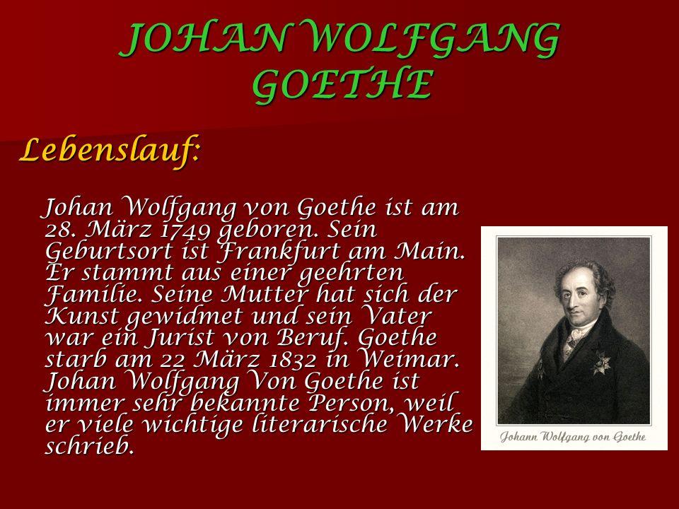 JOHAN WOLFGANG GOETHE Lebenslauf: