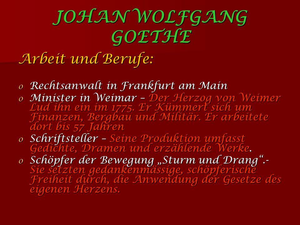 JOHAN WOLFGANG GOETHE Arbeit und Berufe: