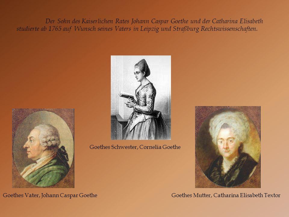 Der Sohn des Kaiserlichen Rates Johann Caspar Goethe und der Catharina Elisabeth studierte ab 1765 auf Wunsch seines Vaters in Leipzig und Straßburg Rechtswissenschaften.