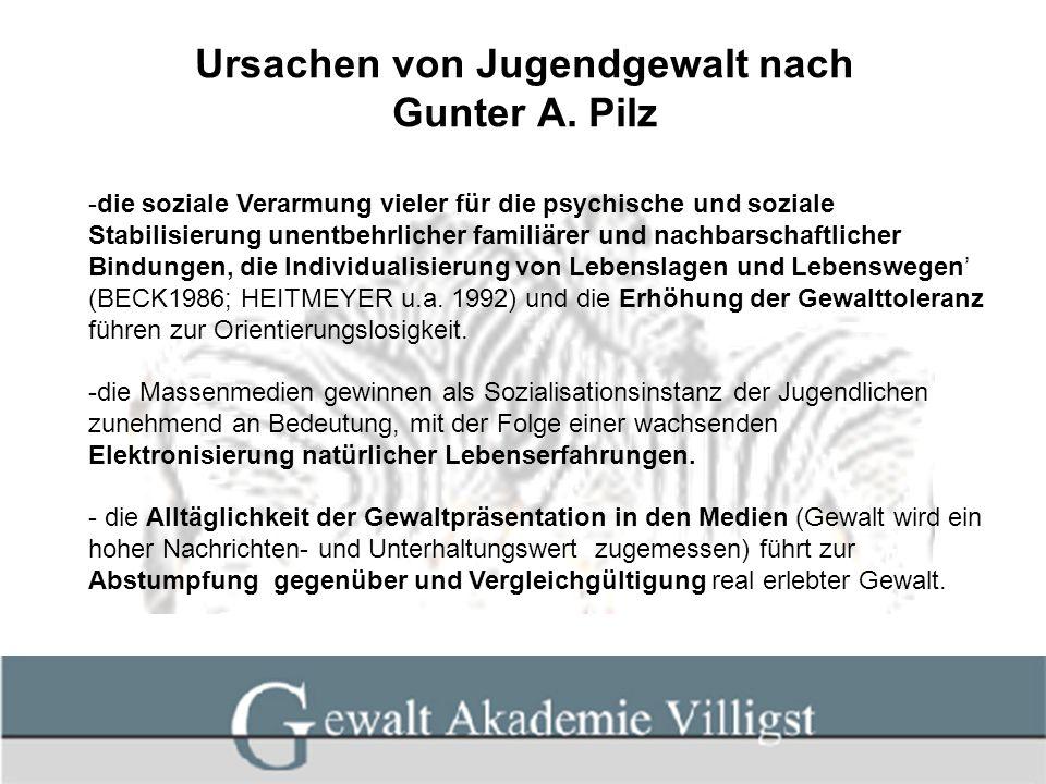 Ursachen von Jugendgewalt nach Gunter A. Pilz