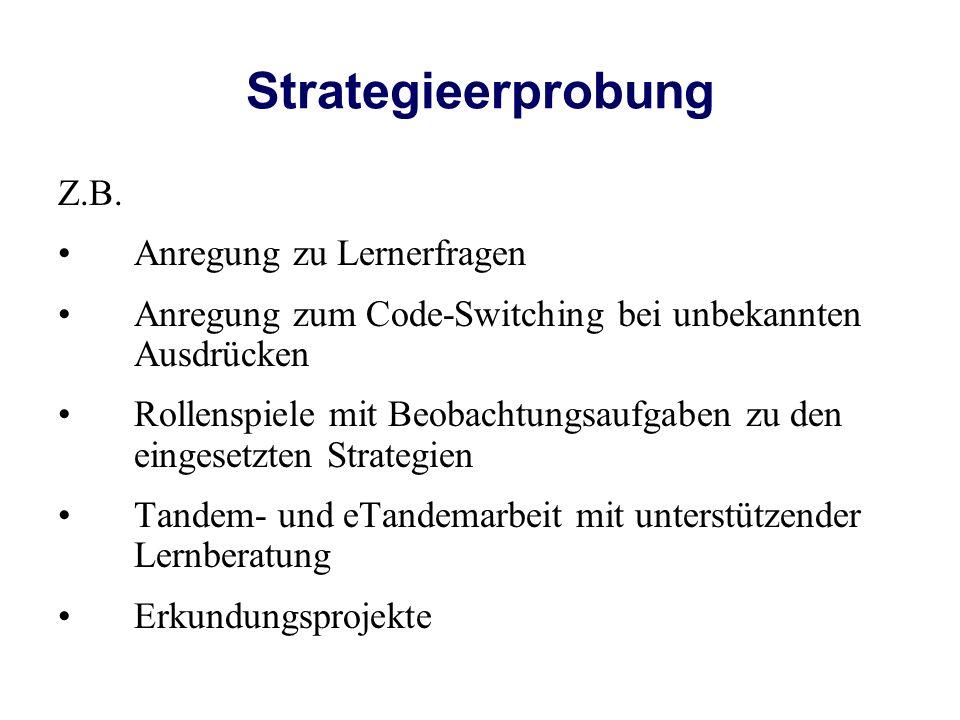 Strategieerprobung Z.B. Anregung zu Lernerfragen