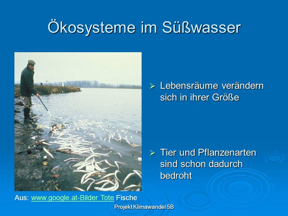 Ökosysteme im Süßwasser