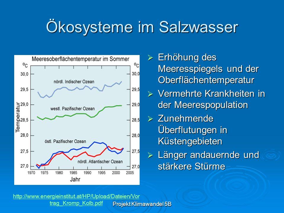 Ökosysteme im Salzwasser