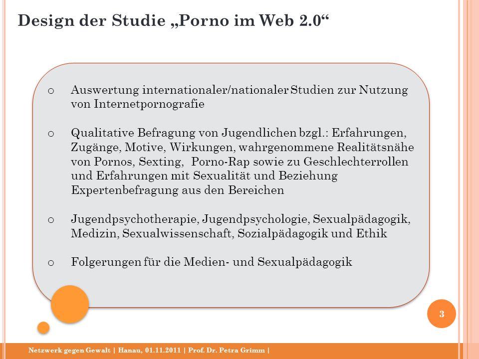 """Design der Studie """"Porno im Web 2.0"""