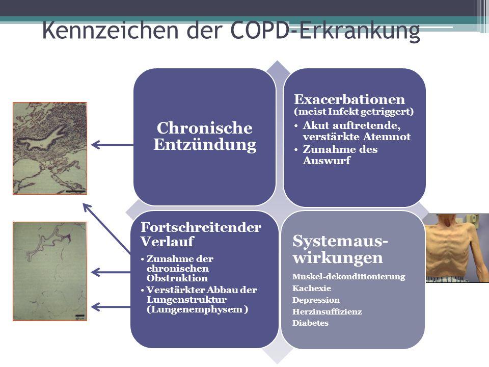 Kennzeichen der COPD-Erkrankung