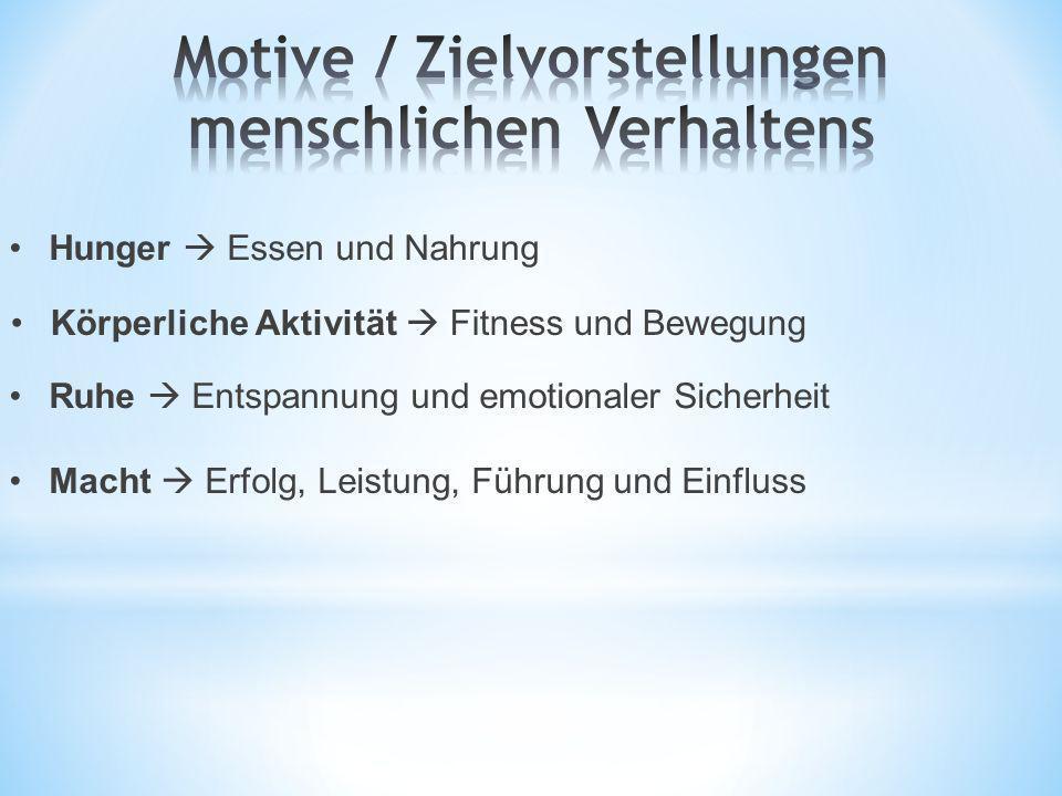 Motive / Zielvorstellungen menschlichen Verhaltens