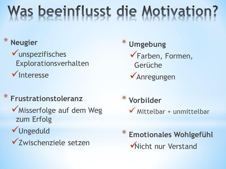 Was beeinflusst die Motivation