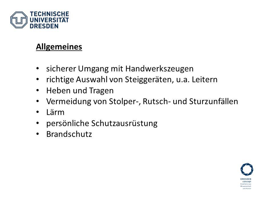 Allgemeines sicherer Umgang mit Handwerkszeugen. richtige Auswahl von Steiggeräten, u.a. Leitern. Heben und Tragen.