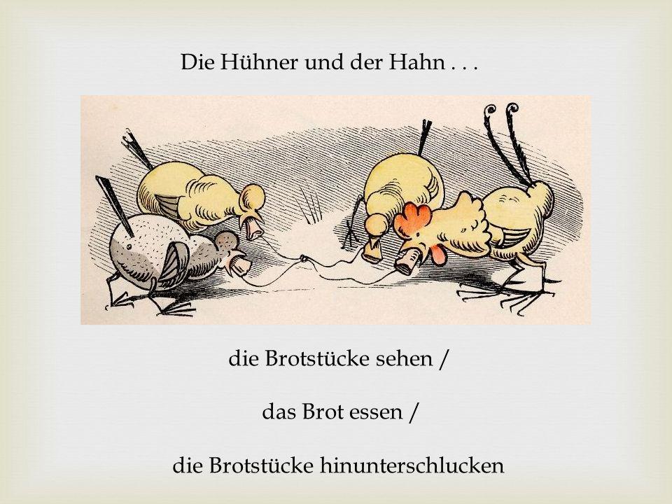 Die Hühner und der Hahn .