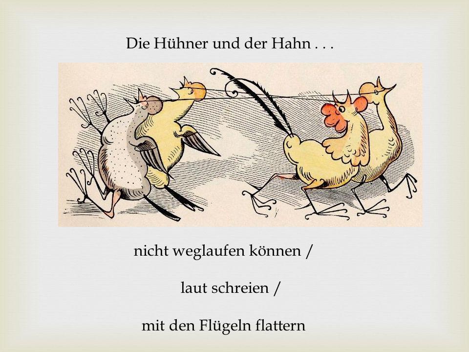 Die Hühner und der Hahn . . . nicht weglaufen können / laut schreien / mit den Flügeln flattern