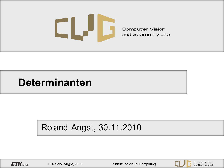 Determinanten Roland Angst, 30.11.2010