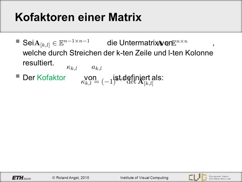 Kofaktoren einer Matrix