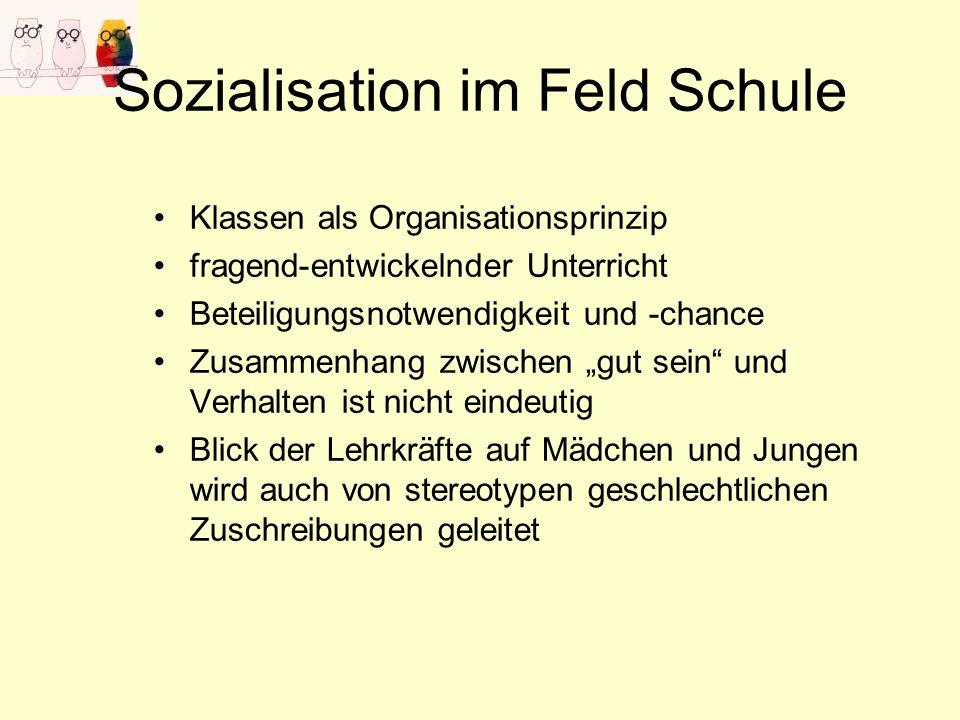 Sozialisation im Feld Schule