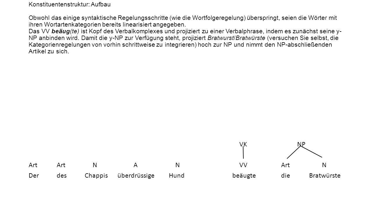 Konstituentenstruktur: Aufbau Obwohl das einige syntaktische Regelungsschritte (wie die Wortfolgeregelung) überspringt, seien die Wörter mit ihren Wortartenkategorien bereits linearisiert angegeben. Das VV beäug(te) ist Kopf des Verbalkomplexes und projiziert zu einer Verbalphrase, indem es zunächst seine y-NP anbinden wird. Damit die y-NP zur Verfügung steht, projiziert Bratwurst/Bratwürste (versuchen Sie selbst, die Kategorienregelungen von vorhin schrittweise zu integrieren) hoch zur NP und nimmt den NP-abschließenden Artikel zu sich.