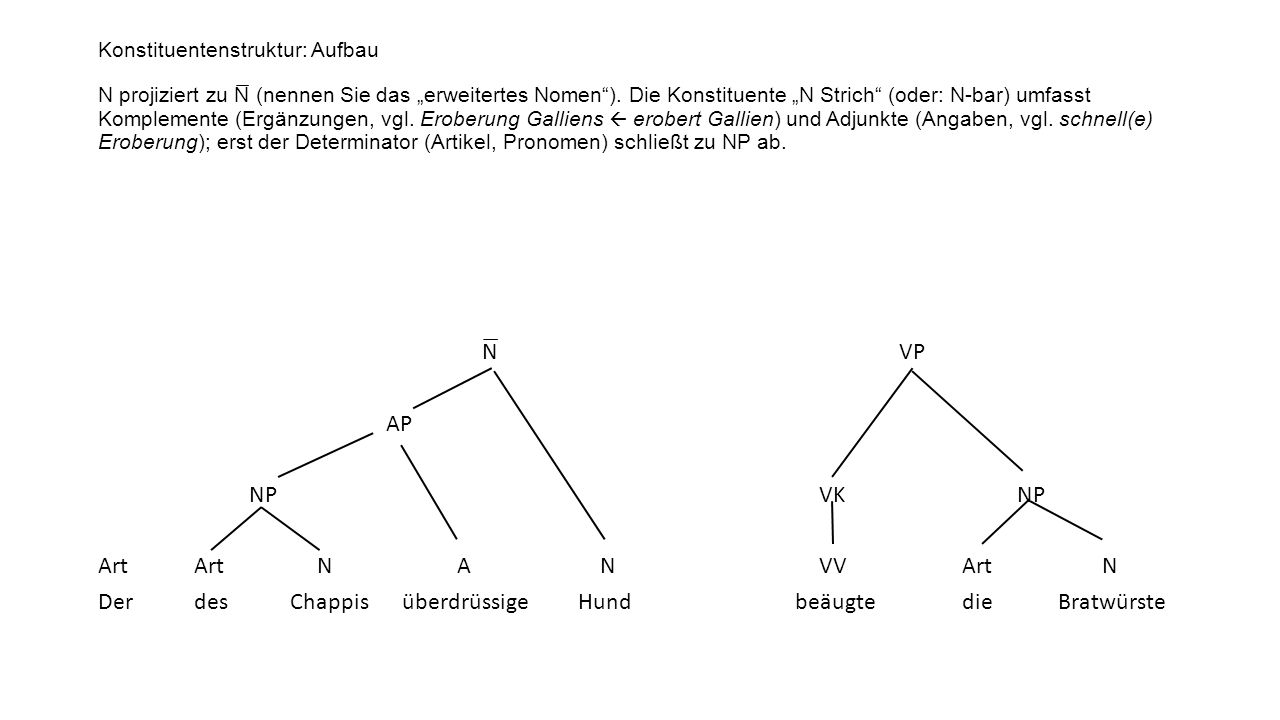 """Konstituentenstruktur: Aufbau N projiziert zu N̅ (nennen Sie das """"erweitertes Nomen ). Die Konstituente """"N Strich (oder: N-bar) umfasst Komplemente (Ergänzungen, vgl. Eroberung Galliens  erobert Gallien) und Adjunkte (Angaben, vgl. schnell(e) Eroberung); erst der Determinator (Artikel, Pronomen) schließt zu NP ab."""