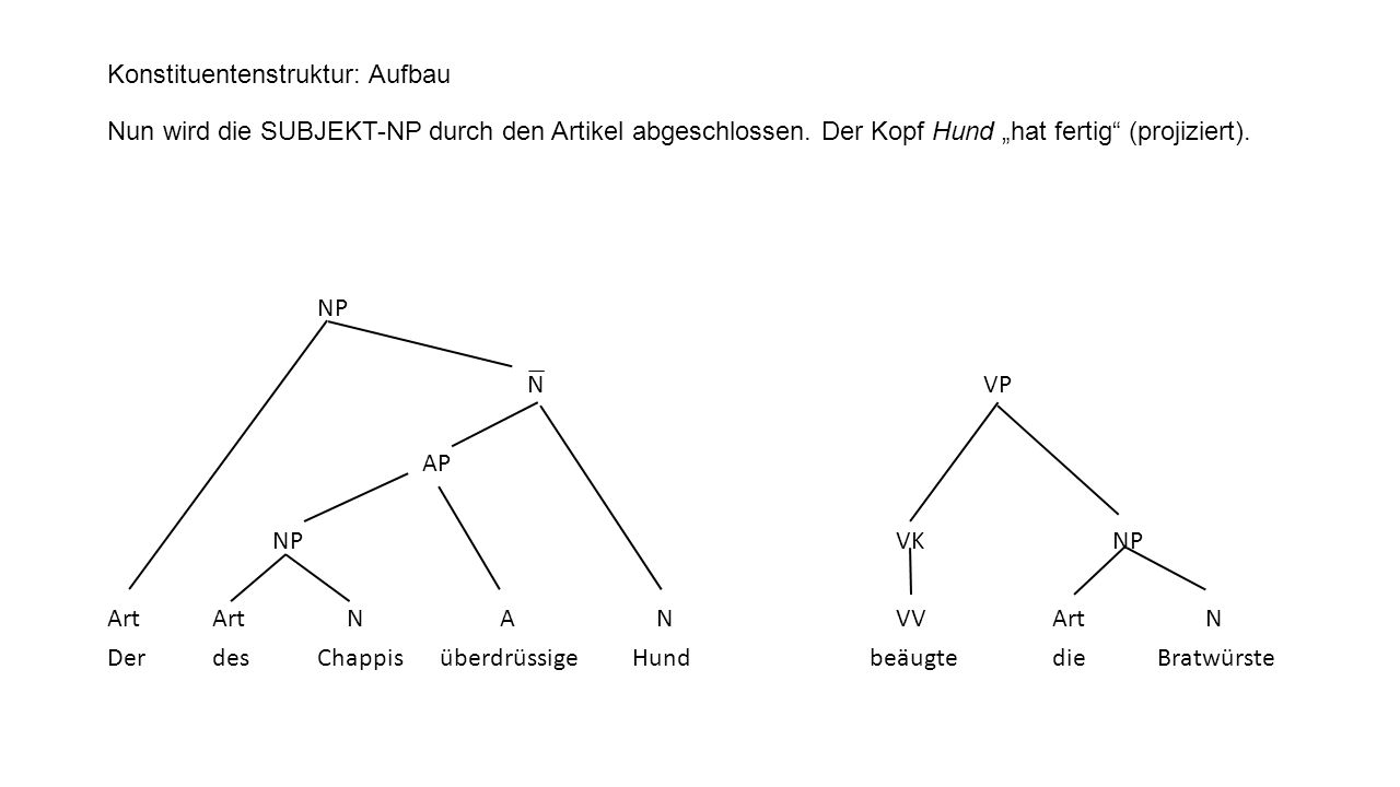 "Konstituentenstruktur: Aufbau Nun wird die SUBJEKT-NP durch den Artikel abgeschlossen. Der Kopf Hund ""hat fertig (projiziert)."
