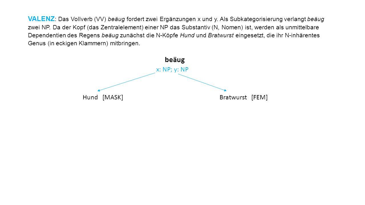VALENZ: Das Vollverb (VV) beäug fordert zwei Ergänzungen x und y