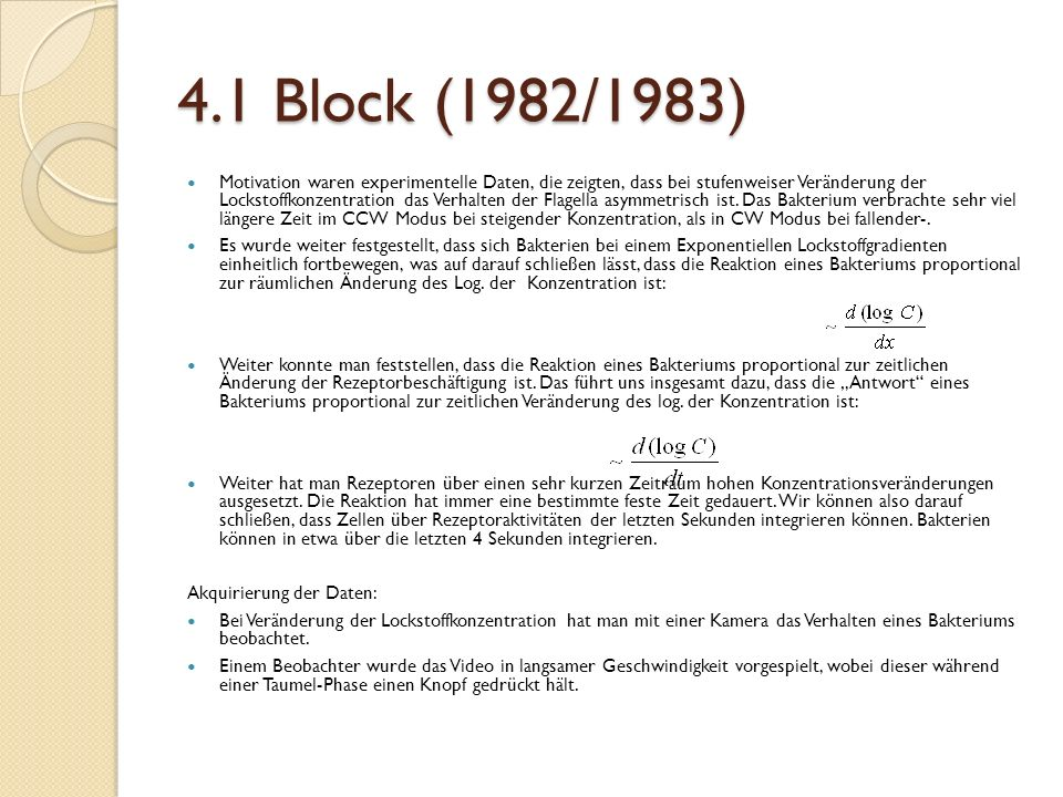 4.1 Block (1982/1983)