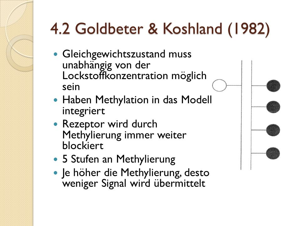 4.2 Goldbeter & Koshland (1982)