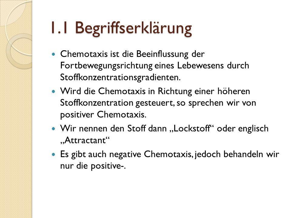 1.1 Begriffserklärung Chemotaxis ist die Beeinflussung der Fortbewegungsrichtung eines Lebewesens durch Stoffkonzentrationsgradienten.