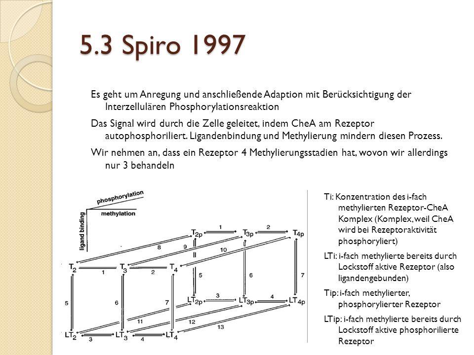 5.3 Spiro 1997 Es geht um Anregung und anschließende Adaption mit Berücksichtigung der Interzellulären Phosphorylationsreaktion.
