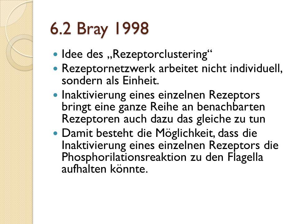 """6.2 Bray 1998 Idee des """"Rezeptorclustering"""