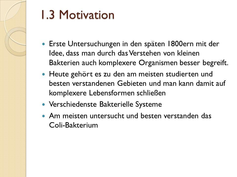 1.3 Motivation