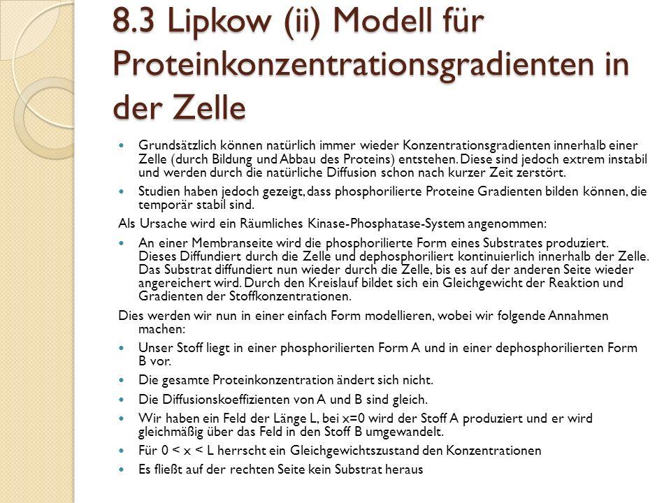 8.3 Lipkow (ii) Modell für Proteinkonzentrationsgradienten in der Zelle