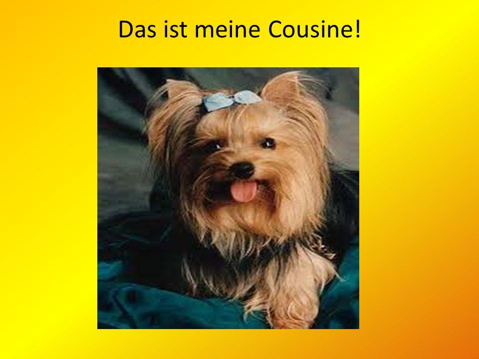 Das ist meine Cousine!