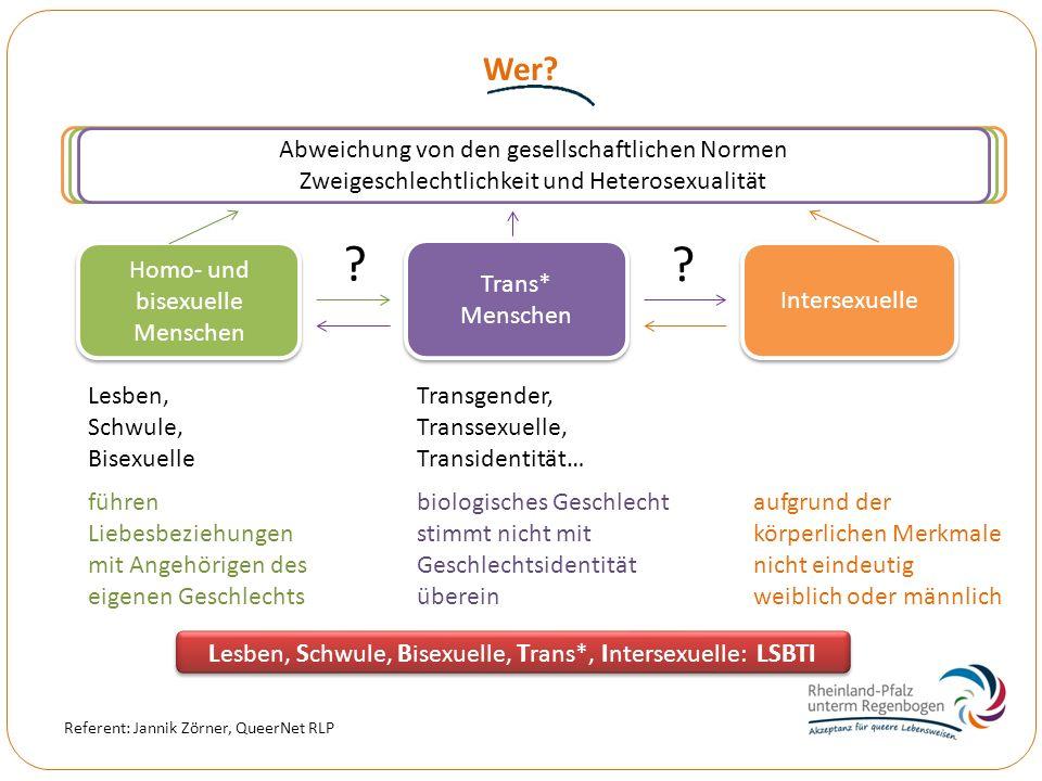 Wer Lesben, Schwule, Bisexuelle, Trans*, Intersexuelle: LSBTI
