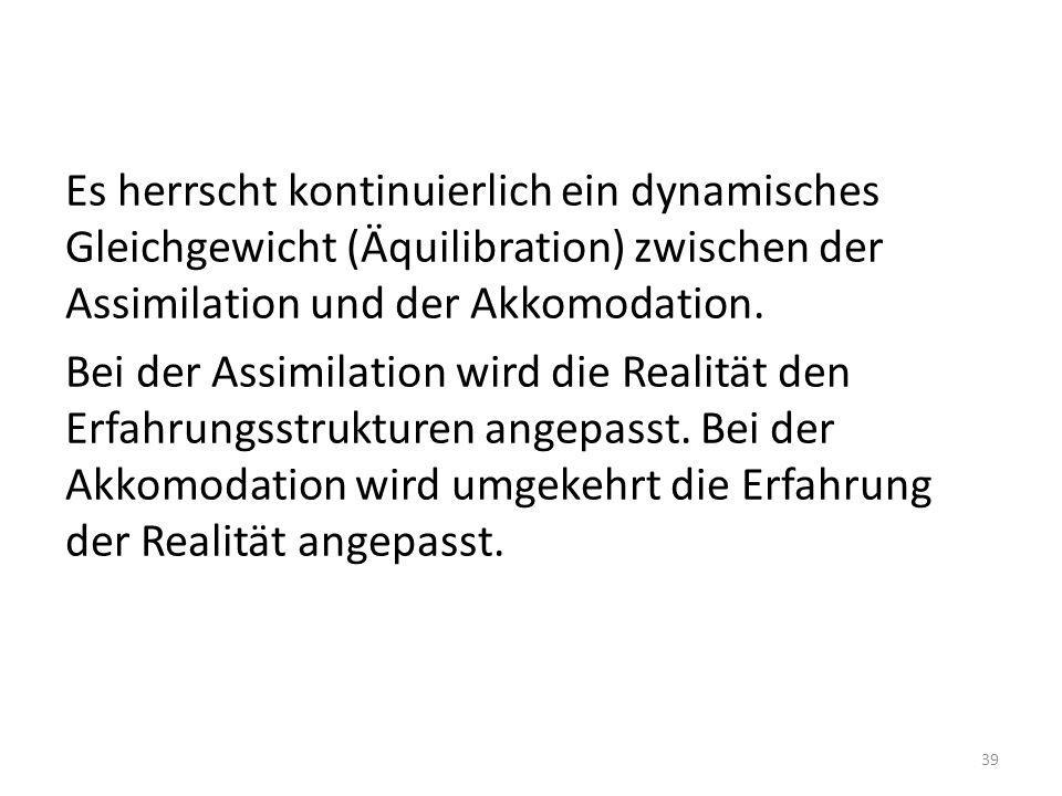 Es herrscht kontinuierlich ein dynamisches Gleichgewicht (Äquilibration) zwischen der Assimilation und der Akkomodation.