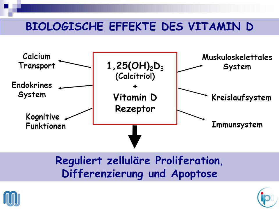 BIOLOGISCHE EFFEKTE DES VITAMIN D