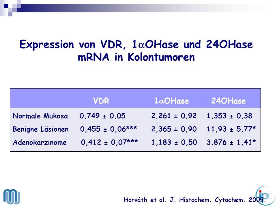 Expression von VDR, 1aOHase und 24OHase mRNA in Kolontumoren