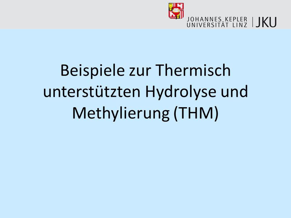 Beispiele zur Thermisch unterstützten Hydrolyse und Methylierung (THM)