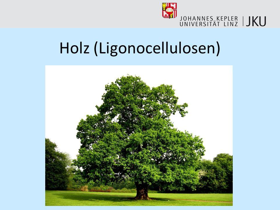 Holz (Ligonocellulosen)