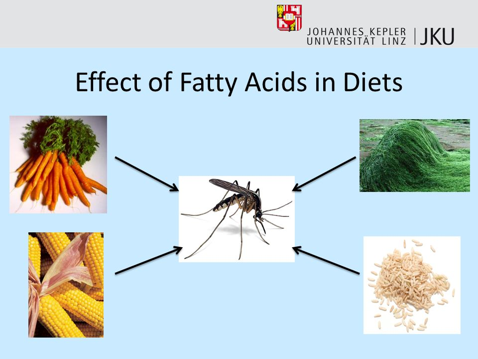 Effect of Fatty Acids in Diets