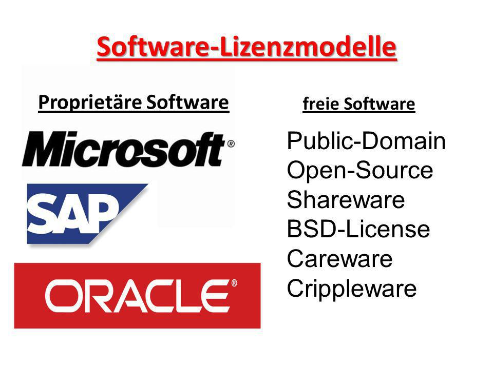 Software-Lizenzmodelle