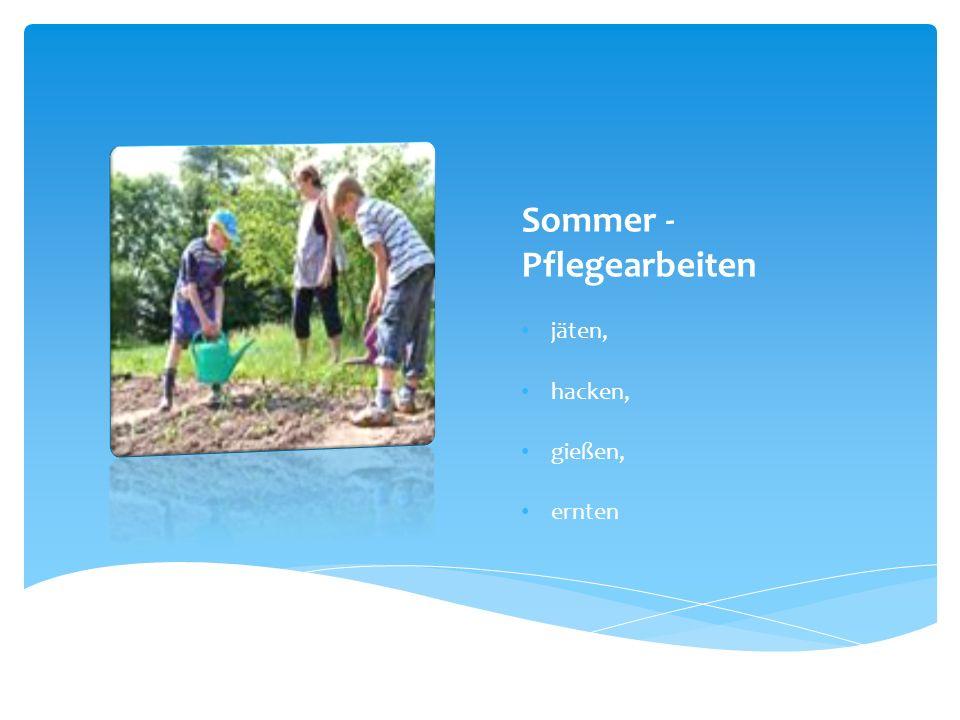 Sommer - Pflegearbeiten
