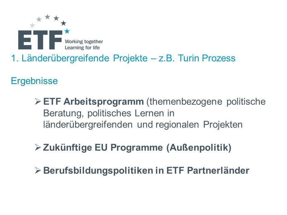 Länderübergreifende Projekte – z.B. Turin Prozess