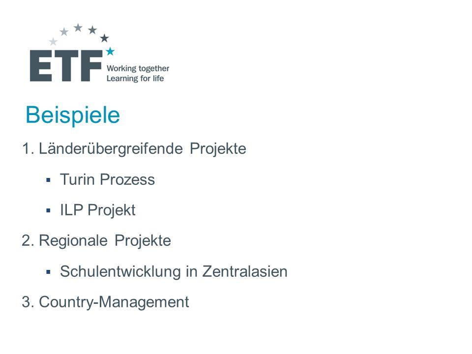 Beispiele 1. Länderübergreifende Projekte Turin Prozess ILP Projekt