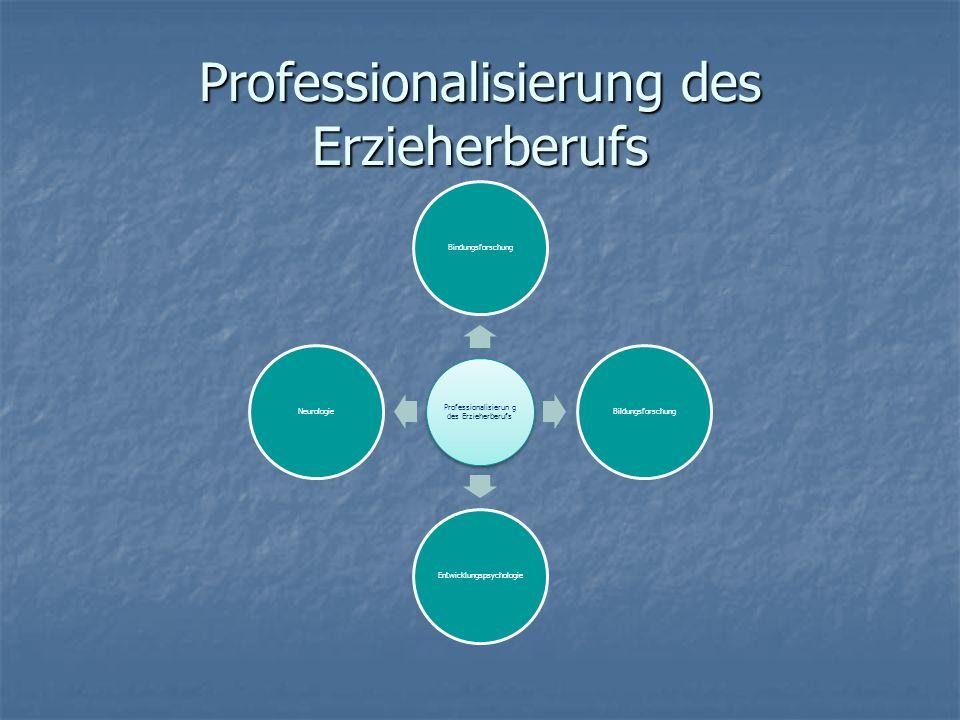 Professionalisierung des Erzieherberufs