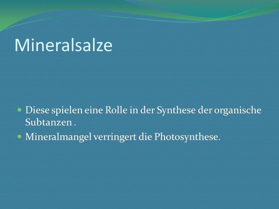 Mineralsalze Diese spielen eine Rolle in der Synthese der organische Subtanzen .