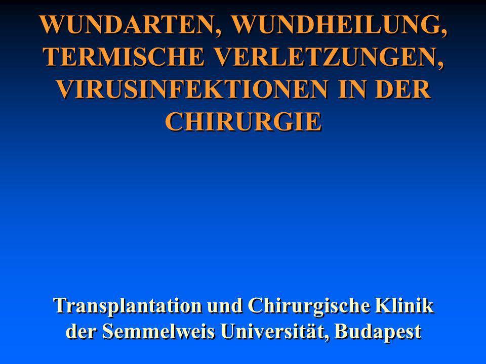 WUNDARTEN, WUNDHEILUNG, TERMISCHE VERLETZUNGEN, VIRUSINFEKTIONEN IN DER CHIRURGIE